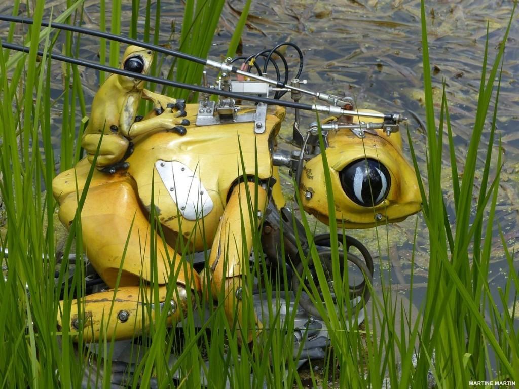 grenouille-mecanique