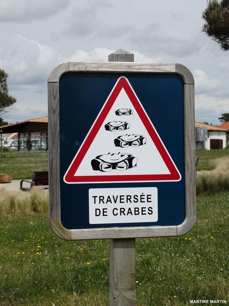 traversee-de-crabes